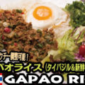 gapao-rice-300x200-60